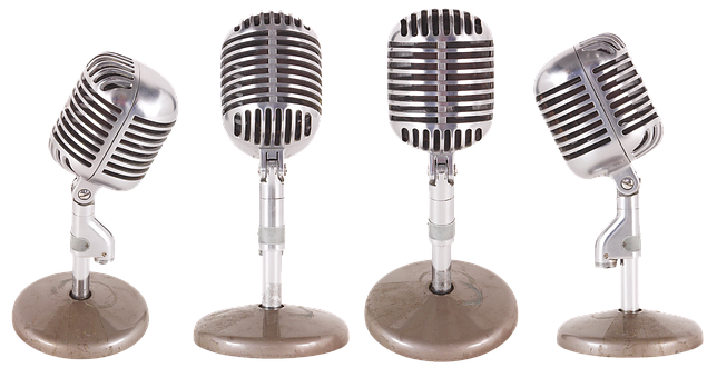 wireless-microphone-2907453__340.png